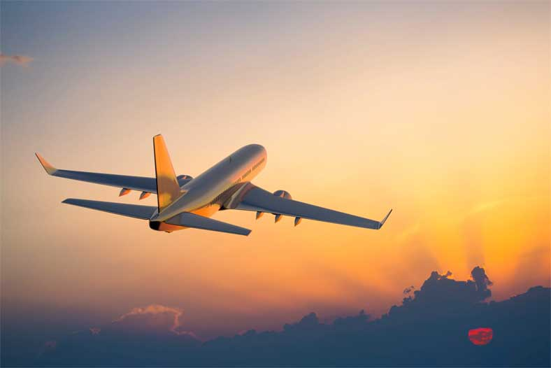 Airplane Disasters Require Specialized Knowledge